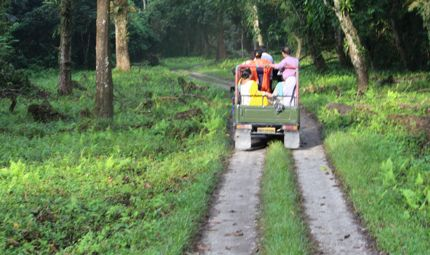 Jeep Safari at Gorumara