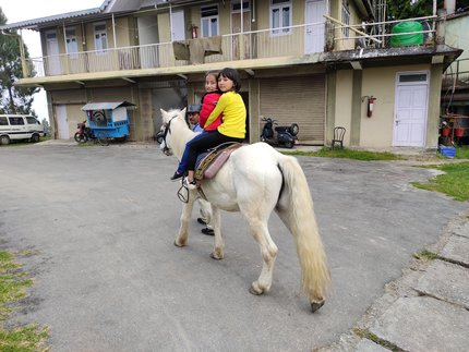 Horse riding at Dello